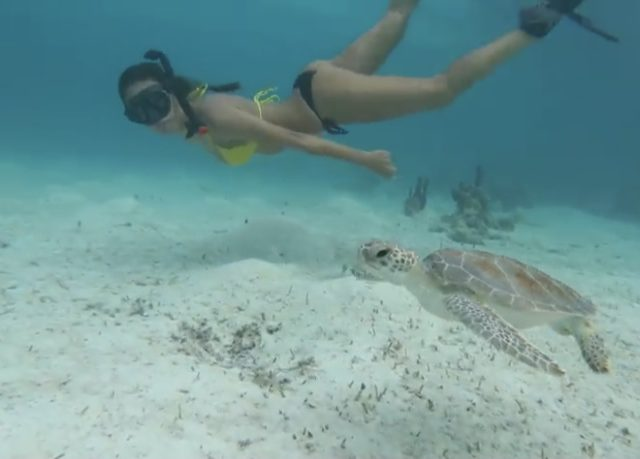 Swimming in Crystal Clear Water in the Bahamas? Yes.